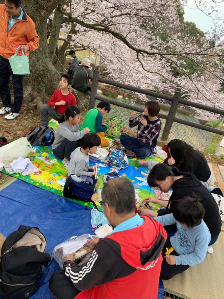 桜の季節がやってきました!!
